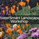 WaterSmart Landscape Workshop